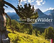 Cover-Bild zu Faszination Bergwälder von Gerth, Roland
