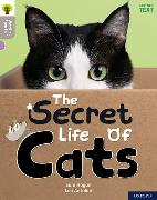 Cover-Bild zu Hogan, Sam: Oxford Reading Tree Word Sparks: Level 1: The Secret Life of Cats