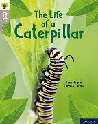 Cover-Bild zu Hogan, Sam: Oxford Reading Tree Word Sparks: Level 1: The Life of a Caterpillar