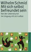 Cover-Bild zu Mit sich selbst befreundet sein von Schmid, Wilhelm