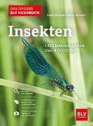 Cover-Bild zu Das große BLV Handbuch Insekten