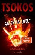 Cover-Bild zu Tsokos, Michael: Abgefackelt (eBook)