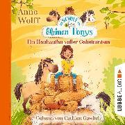 Cover-Bild zu Wolff, Anne: Die Schule der kleinen Ponys, Teil 1: Ein Heuhaufen voller Geheimnisse (Ungekürzt) (Audio Download)