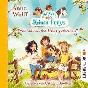 Cover-Bild zu Wolff, Anne: Die Schule der kleinen Ponys, Teil 2: Wen hat hier der Hafer gestochen? (Ungekürzt) (Audio Download)