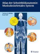Cover-Bild zu Atlas der Schnittbildanatomie: Muskuloskelettales System von Möller, Torsten Bert