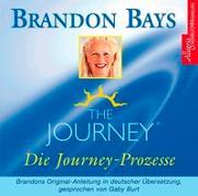 Cover-Bild zu The Journey - Die Journey Prozesse von Bays, Brandon