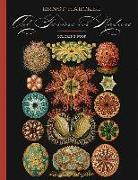 Cover-Bild zu Ernst Haeckel (Illustr.): Ernst Haeckel Art Forms in Nature Coloring Book