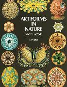 Cover-Bild zu Haeckel, Ernst: Art Forms in Nature (eBook)