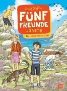 Cover-Bild zu Blyton, Enid: Fünf Freunde JUNIOR - Der unsichtbare Dieb (eBook)