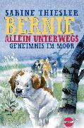 Cover-Bild zu Thiesler, Sabine: Bernie allein unterwegs - Geheimnis im Moor (eBook)