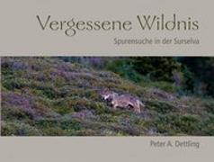 Cover-Bild zu Vergessene Wildnis von Dettling, Peter