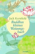 Cover-Bild zu Buddhas kleines Weisungsbuch von Kornfield, Jack