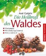 Cover-Bild zu Gutjahr, Axel: Die Heilkraft des Waldes (eBook)