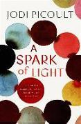 Cover-Bild zu A Spark of Light von Picoult, Jodi