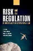 Cover-Bild zu Risk and the Regulation of Uncertainty in International Law (eBook) von Ambrus, Monika (Hrsg.)