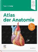 Cover-Bild zu Atlas der Anatomie von Netter, Frank H.