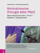 Cover-Bild zu Minimalinvasive Chirurgie beim Pferd von Röcken, Michael (Hrsg.)