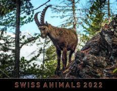 Cover-Bild zu Cal. Swiss Animals 2022 Ft. 40x31