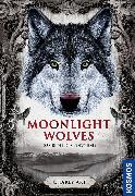 Cover-Bild zu Art, Charly: Moonlight wolves, Das Rudel der Finsternis (eBook)
