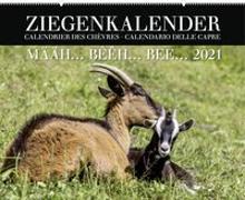 Cover-Bild zu Ziegenkalender / Calendrier des chèvres / Calendario delle capre 2021