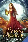 Cover-Bild zu Hale, Shannon: Princess Academy, Band 3: Der Auftrag des Königs (eBook)