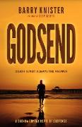 Cover-Bild zu Knister, Barry: Godsend (Brenda Contay) (eBook)