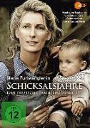 Cover-Bild zu Heye, Uwe-Karsten: Schicksalsjahre - Eine deutsche Familiengeschichte
