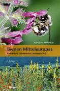 Cover-Bild zu Amiet, Felix: Bienen Mitteleuropas