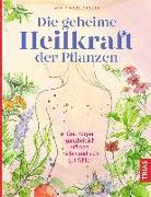 Cover-Bild zu Die geheime Heilkraft der Pflanzen von Groves, Maria Noel