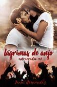 Cover-Bild zu Lagrimas de anjo (eBook) von Hernandez, Juani