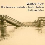 Cover-Bild zu Der Wanderer zwischen beiden Welten (Audio Download) von Flex, Walter