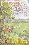 Cover-Bild zu Leigh Fermor, Patrick: Between the Woods and the Water