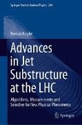 Cover-Bild zu Advances in Jet Substructure at the LHC (eBook) von Kogler, Roman