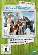 Cover-Bild zu Astrid Lindgren - Ferien auf Saltkrokan von Lindgren, Astrid