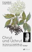 Cover-Bild zu Chrut und Uchrut von Künzle, Johann