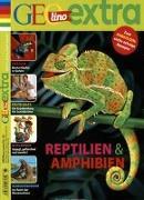 Cover-Bild zu GEOlino extra 65/2017 - Reptilien & Amphibien von Verg, Martin (Hrsg.)