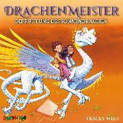 Cover-Bild zu Drachenmeister (2) (Audio Download) von West, Tracey