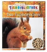 Cover-Bild zu Meine große Tierbibliothek: Das Eichhörnchen von Ledu-Frattini, Stéphanie