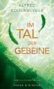 Cover-Bild zu Bodenheimer, Alfred: Im Tal der Gebeine