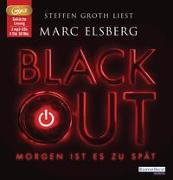 Cover-Bild zu BLACKOUT - von Elsberg, Marc