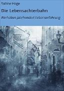 Cover-Bild zu Die Lebensachterbahn (eBook) von Hoge, Sabine