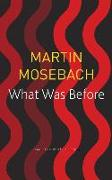 Cover-Bild zu Mosebach, Martin: What Was Before