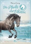 Cover-Bild zu Czerny, Theresa: Die Pferde von Eldenau - Galopp durch die Brandung - Band 2