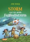 Cover-Bild zu Storm und der große Fußballsturm von Birck, Jan