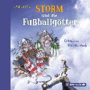 Cover-Bild zu Storm und die Fußballgötter von Birck , Jan