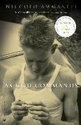 Cover-Bild zu As God Commands von Ammaniti, Niccolò