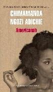 Cover-Bild zu Ngozi Adichie, Chimamanda: Americanah (Spanish Edition)