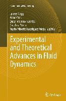Cover-Bild zu Experimental and Theoretical Advances in Fluid Dynamics von Klapp, Jaime (Hrsg.)