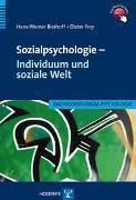 Cover-Bild zu Sozialpsychologie - Individuum und soziale Welt von Bierhoff, Hans W.