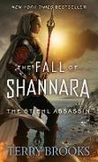 Cover-Bild zu The Stiehl Assassin (eBook) von Brooks, Terry